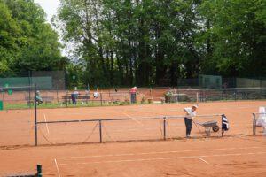 Das Tennisleben kehrt wieder ein beim TC Burg!